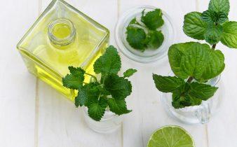 11 beneficios de la menta para la salud, y usos - Sweetter