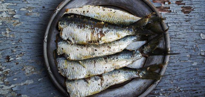 Sardina es el pescado bueno y barato por excelencia en México, estos son sus beneficios - Sweetter